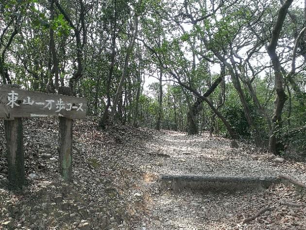 林の間を縫うように抜ける、東山一万歩コース: